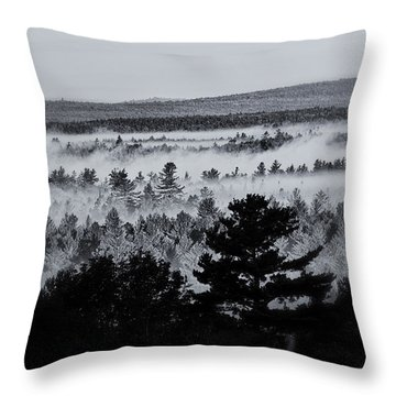 Ground Fog Throw Pillow by Susan Capuano