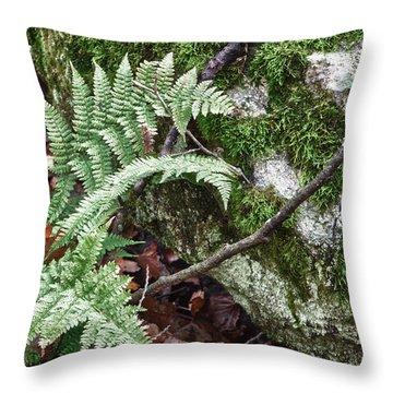 Ground Foliage Near Mountain Lake Throw Pillow
