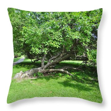 Grow Sideways Throw Pillow