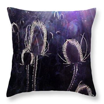 Grow Towards The Light Throw Pillow by Danielle  Parent