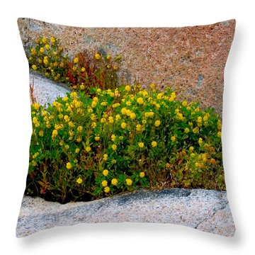 Growing In The Cracks Throw Pillow by Brent L Ander