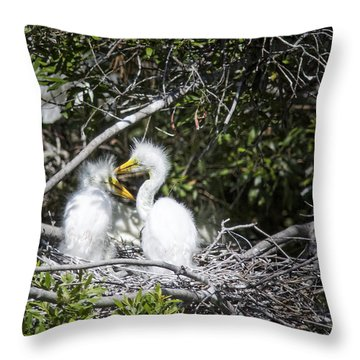 Growing Nestlings Throw Pillow by Phill Doherty
