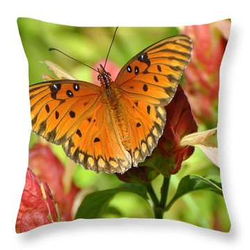 Gulf Fritillary Butterfly On Flower Throw Pillow by Jodi Terracina