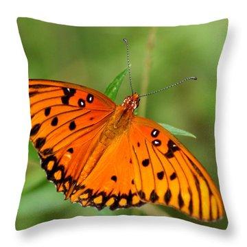 Gulf Fritillary II Throw Pillow by Bruce W Krucke