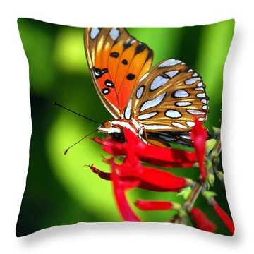 Gulf Fritillary Throw Pillow by Skip Willits