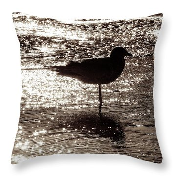 Throw Pillow featuring the photograph Gull In Silver Tidal Pool by Jim Moore