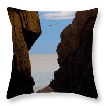 Gulls Of Acadia Throw Pillow by Brent L Ander
