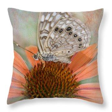 Hackberry Emplorer Butterfly Throw Pillow by Betty LaRue