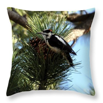 Hairy Woodpecker On Pine Cone Throw Pillow