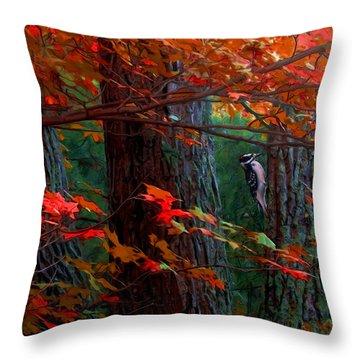 Hairy Woodpecker Throw Pillow by Ron Jones