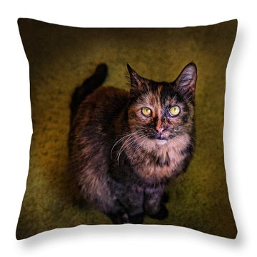 Haley Joel Throw Pillow