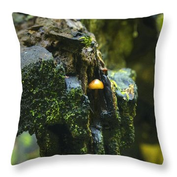 Hanging In There Throw Pillow by Michael Peychich