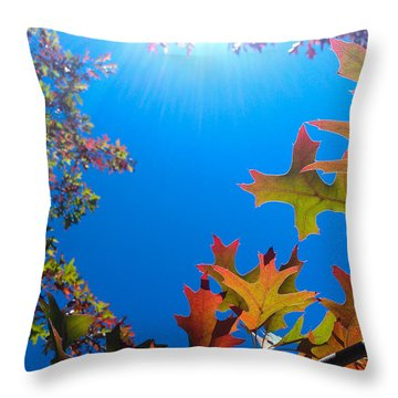 Throw Pillow featuring the photograph Happy Autumn by CML Brown