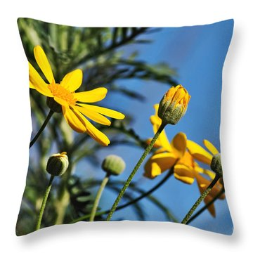 Happy Daisies Throw Pillow by Kaye Menner