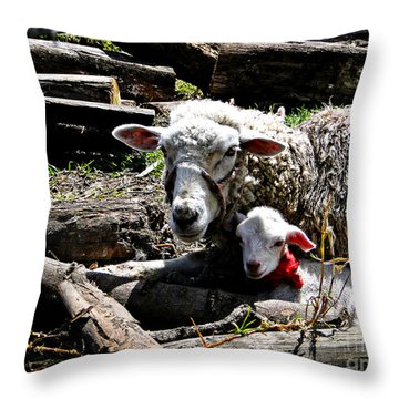 Happy Mothers Day Throw Pillow by Al Bourassa