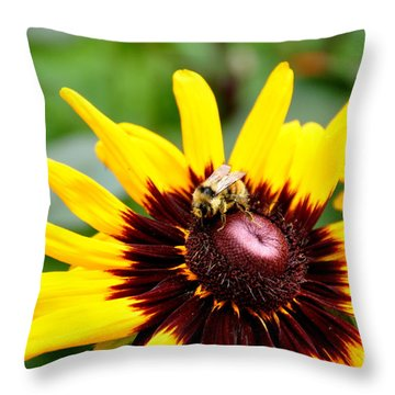 Throw Pillow featuring the photograph Happy Rudbeckia by Tanya  Searcy