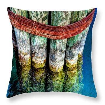 Harbor Dock Posts Throw Pillow by Michael Garyet