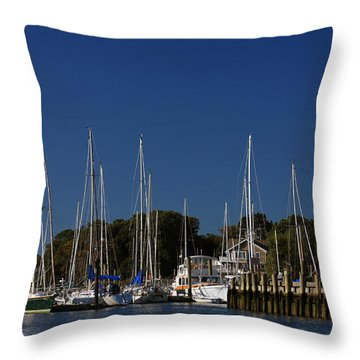 Harbor View Throw Pillow by Karol Livote