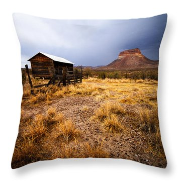 Hard Times Throw Pillow