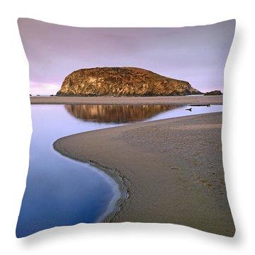 Harris Beach State Park Oregon Throw Pillow by Tim Fitzharris