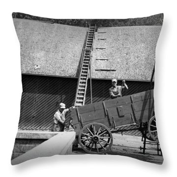 Throw Pillow featuring the photograph Harvest by Bonfire Photography
