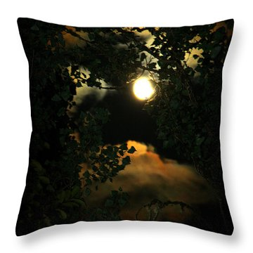 Throw Pillow featuring the photograph Haunting Moon by Jeanette C Landstrom