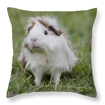 Have You Seen My Hairspray? Throw Pillow by Jim And Emily Bush