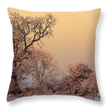 Frost 2 Throw Pillow by Linsey Williams