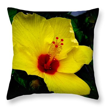 Throw Pillow featuring the photograph Hawaiian Yellow Hibiscus by Athena Mckinzie