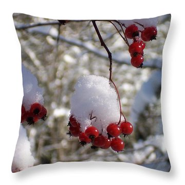 Hawthorn Berries In The Snow Throw Pillow by Peter Mooyman