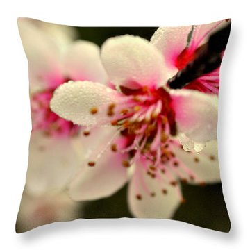 Hawthorn  Throw Pillow by Marty Koch