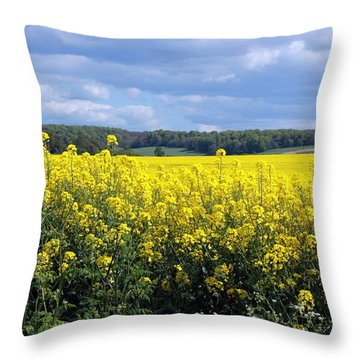Hay Fever Throw Pillow