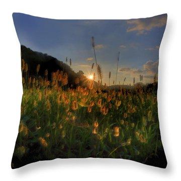 Hay Field Throw Pillow by Dan Friend