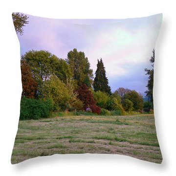 Hay Field Guardians Throw Pillow by Pamela Patch