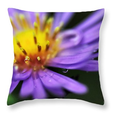 Hazy Daisy... With Droplets Throw Pillow by Kaye Menner