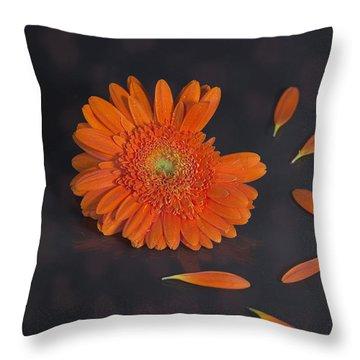 He Loves Me... Throw Pillow by Joana Kruse