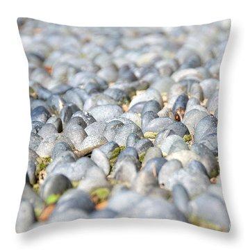 Healing Garden Throw Pillow by Ivy Ho