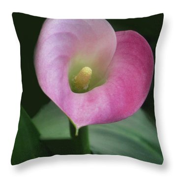 Throw Pillow featuring the photograph Heart On Sleeve by Tammy Espino