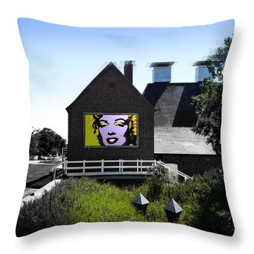 Heatwave Throw Pillow by Charles Stuart