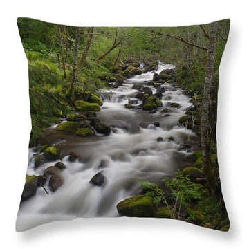 Heavenly Flow Throw Pillow by Mike Reid