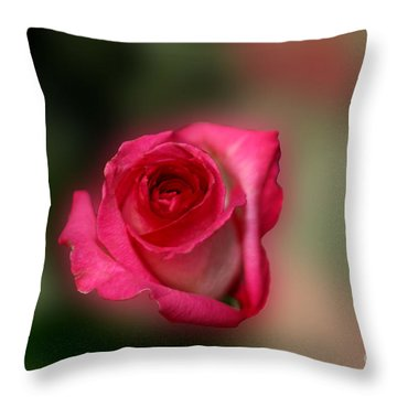 Throw Pillow featuring the photograph Heavenly Rose by Michael Waters