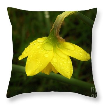 Throw Pillow featuring the photograph Heavy With Water by Sherman Perry