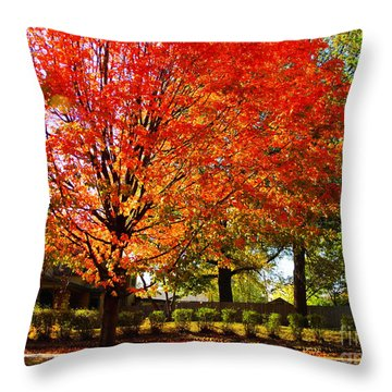 Hedge Row Throw Pillow by Chris Berry