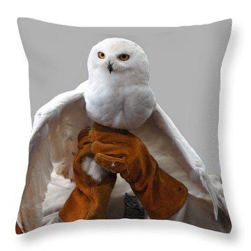 Hedwig Harry Potters Pet Throw Pillow by LeeAnn McLaneGoetz McLaneGoetzStudioLLCcom