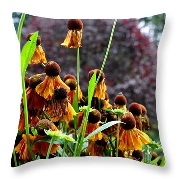 Throw Pillow featuring the photograph Helenium Sneezeweed  by Tanya  Searcy