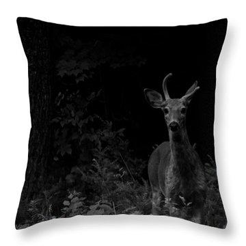 Throw Pillow featuring the photograph Hello Deer by Cheryl Baxter