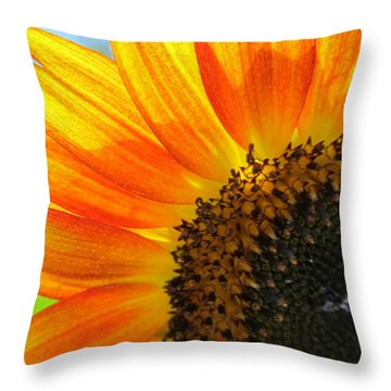 Throw Pillow featuring the photograph Hello Sunflower by Tina M Wenger