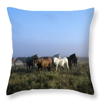 Herd Of Horses And Cowboy On Horseback Throw Pillow by Natural Selection Craig Tuttle
