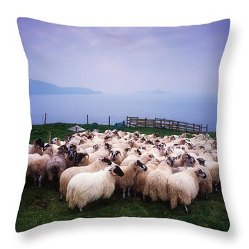 Herding Sheep, Inishtooskert, Blasket Throw Pillow