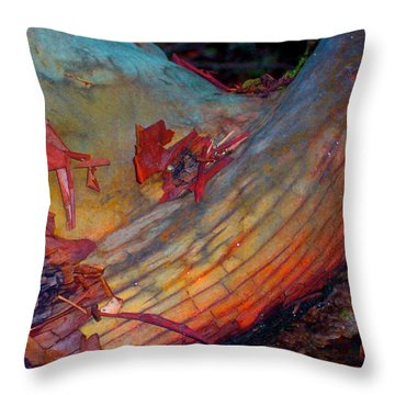 Throw Pillow featuring the digital art Here And Now by Richard Laeton
